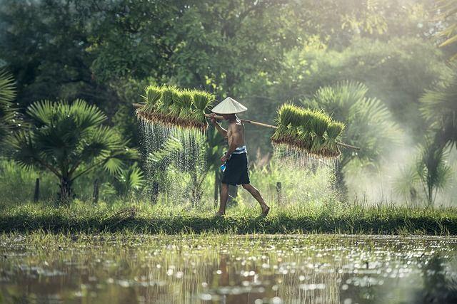 Dovolena_ve_Vietnamu_a_Kambodzi